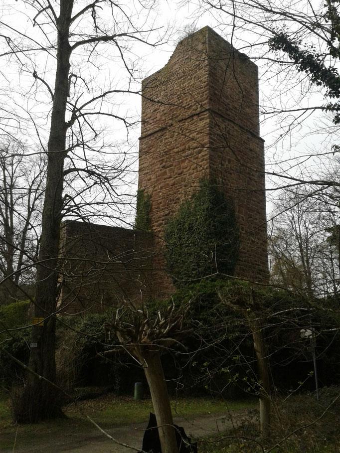 Ruine Liebeneck
