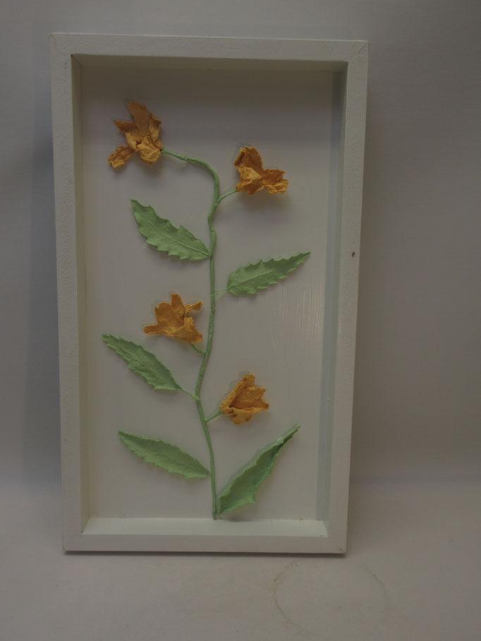 Gedroogde orchideeen voorzien van ingekleurd porceleinslib in baklijst 43x25cm