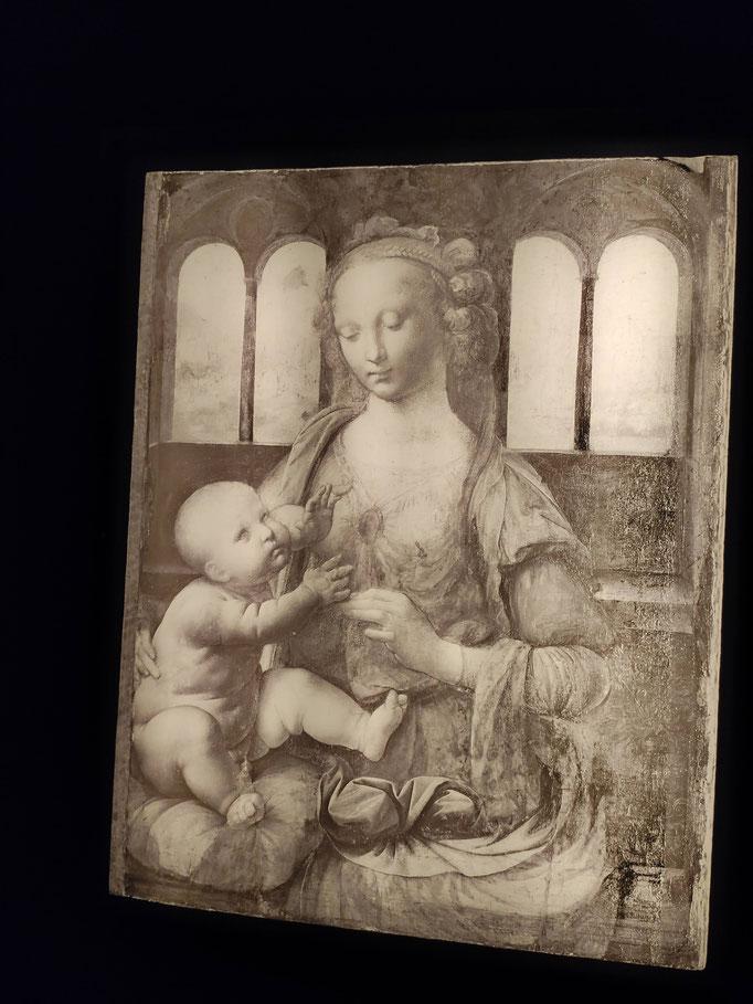 La Madone à l'œillet (1478-1480)
