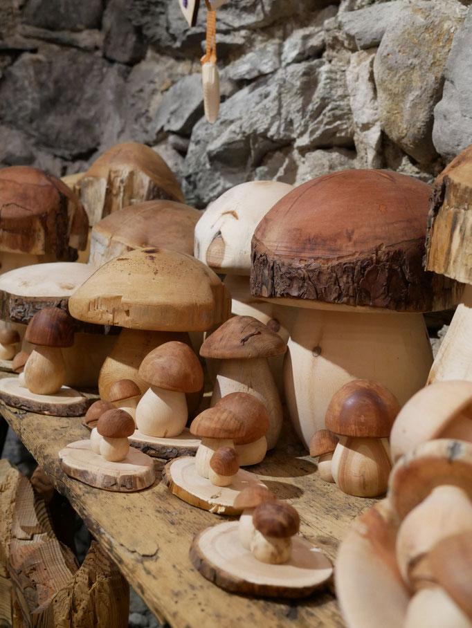 Pilze aus Zirbe
