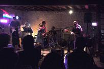 Janvier 2016 - Concert du groupeniortais Rock n' Rags.