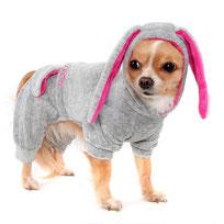костюмы для собак, купить, собака, маленькая собачка, одежда для собак, LIMARGY, FORMYDOG