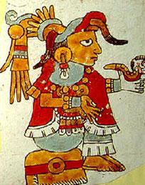 Femme seigneur. Codex de Vienne, début du XVIe.