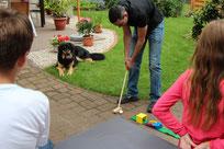 Minigolf - reizvoll auch für Hunde