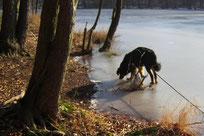 Auf dem Eis des Liepnitzsees