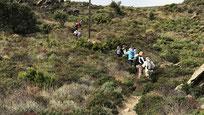 Découvrez le 1er niveau de randonnée de Randos Canétoises,