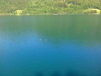 Wasser See Ruhe