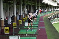 選抜ゴルフ