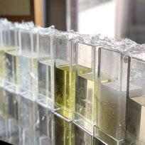 市販の石鹸でつくる透明石鹸新潟県燕市大人の習い事教室