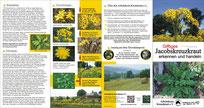 Kreuzkraut Info-Flyer