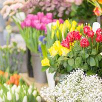 Schnittblumen und Blumensträuße