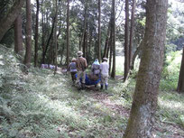 林床を搬送