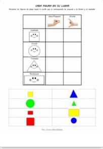Organizar en tamaños y formas