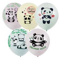 шары с пандами,  шары подруге