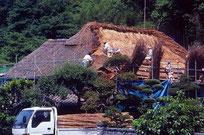 始めに葦葺き屋根の再生