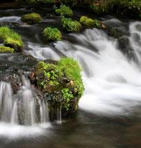 ふきだし公園の湧水