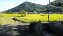 3日目は、希望者5人で岡山泊。 吉備津神社、吉備津彦神社、岡山城、後楽園と巡りました。 岡山駅から20分ほどで、この景色。住むのもいいところと考えたりもしました。前夜は居酒屋でビールに日本酒が29本(1合換算)、本日の歩数2万歩以上。年の割には頑張りました。