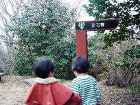 山頂から石尊への遊歩道