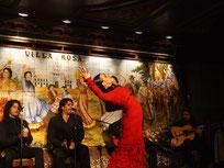 restoran flamenko