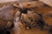 Homo erectus Trace de foyer Terra Amata Nice