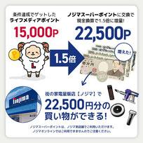 ノジ活で月収1万円稼ぐ