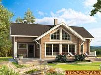 Blockhaus Harz - Chalet - Blockhaus bauen - Einfamilienhaus  mit Satteldach