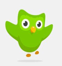 duolingo : app en website : andere taal leren
