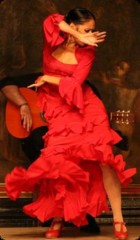 Забронировать столик на спектакль Фламенко в Мадриде