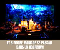 Et si votre mariage se passait dans un aquarium