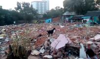 Destruction totale du bidonville