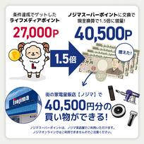 ノジ活で月収5万円