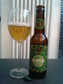 Amazon Beer Forest Bacuri