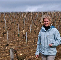wine-tour-sancerre-loire-valley-vinitour-laure-juvet