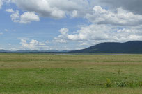 Grassland around a Water reservoir in Nakhon Ratchasima province Thailand