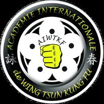 Pflaumenblüte - das Logo von AIWTKF