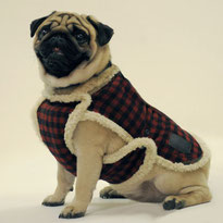 Куртки для собак, шубки для собак, жилетки для собак, попоны для собак,  собака, маленькая собачка, одежда для собак, LIMARGY, FORMYDOG