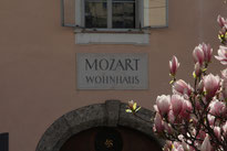 Salzburg Mozart Residence