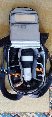 Paul Kornacker,Olympus Visionary,M.Zuiko Digital ED 150-400mm F4.5 TC1.25x IS PRO,Testbericht,Namibia,OM-D-E-M1X