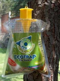 Ecotrampa  $120.ºº Para esos lugares con aglomeracion de moscas dura hasta 6 meses