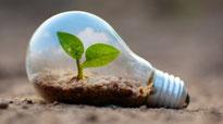 LED Wachstumslicht für Pflanzen