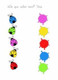 Cada mariquita con su color