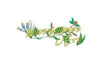 nous sommes l'été - logo - site web