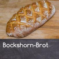 Bhockshornkleebrot Rezept