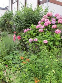 ④季節は梅雨明け。夏の盛り…*