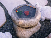 創作型水鉢4