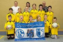 TV Waibstadt Faustball (seit 2016)