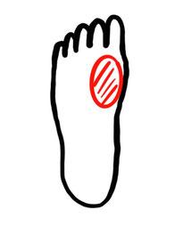 図3.1/踵離地時の足底荷重