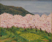 桜(玉祖さん辺り)  油彩15号