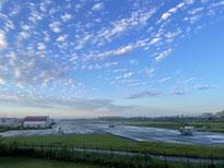 今週の1景(9月17日~9月23日)  曼珠沙華の群生:台風18号の影響がなくなり、好天となった秋の日。野川公園の自然観察園では一面に曼珠沙華(マンジュシャゲ、別名、彼岸花)の赤が鮮やかでした。秋のお彼岸ももうすぐです。