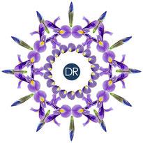 la gamme anti-age iris de docteur renaud dans votre institut de vern sur seiche pret de rennes 35770